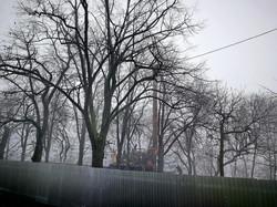 В Одессе идет второй этап ремонта бульвара Жванецкого (ФОТО)