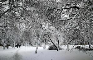 В Одесской области без света остались 20 населенных пунктов