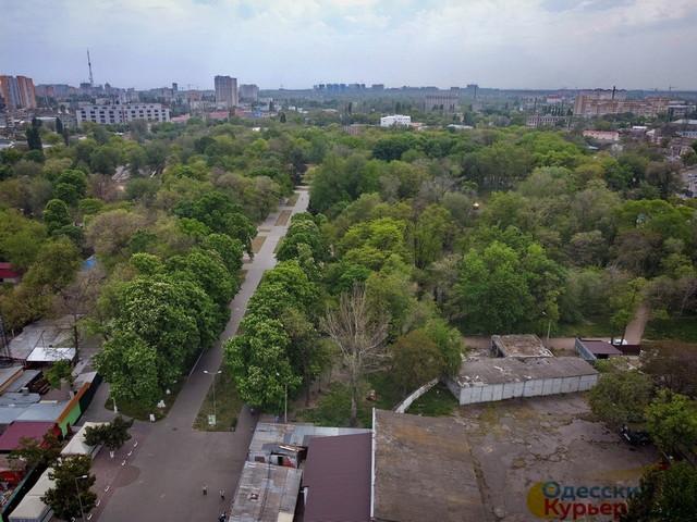 В Одессе установили границы Преображенского парка