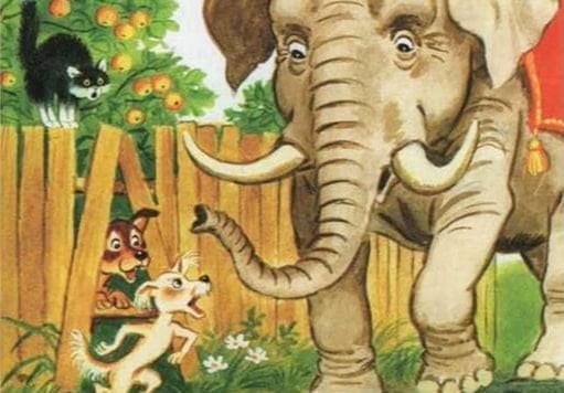 Слоны и Моськи...