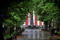 Как выглядит Одесса в первые дни лета (ВИДЕО)