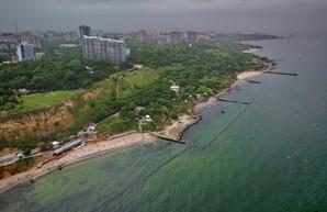 В Одессе показали с высоты, как зацвело Черное море (ФОТО, ВИДЕО)