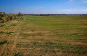 Вступил в силу закон о продаже сельскохозяйственной земли