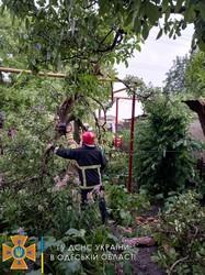 На севере Одесской области спасатели ликвидировали последствия стихийного бедствия (ФОТО)