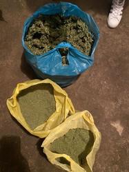 На юге Одесской области пограничники ликвидировали плантацию и производство наркотиков из конопли (ФОТО)