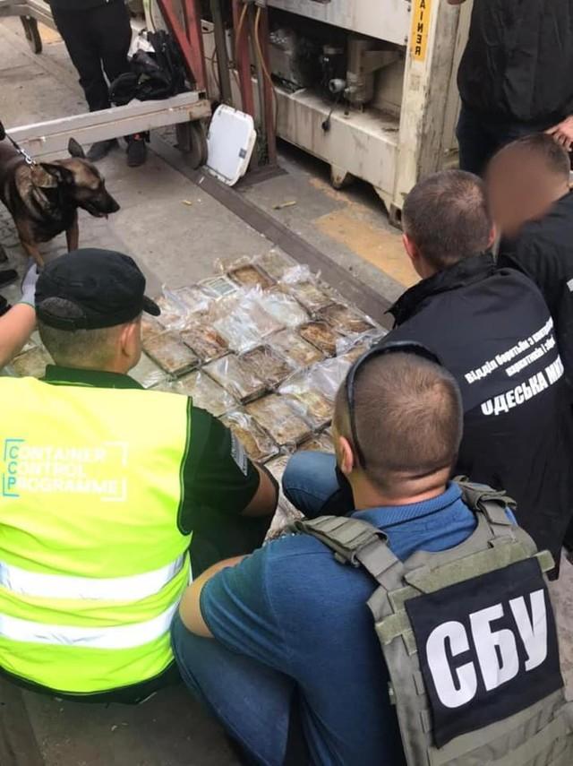 В Одесской области снова перехватили крупную партию наркотиков
